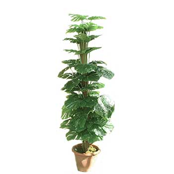 1 pianta artificiali da appartamento filodendro finta con for Piante artificiali economiche